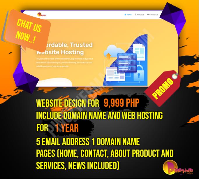 Website Package Promo